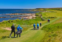 Work-TAG Golf 2019-7